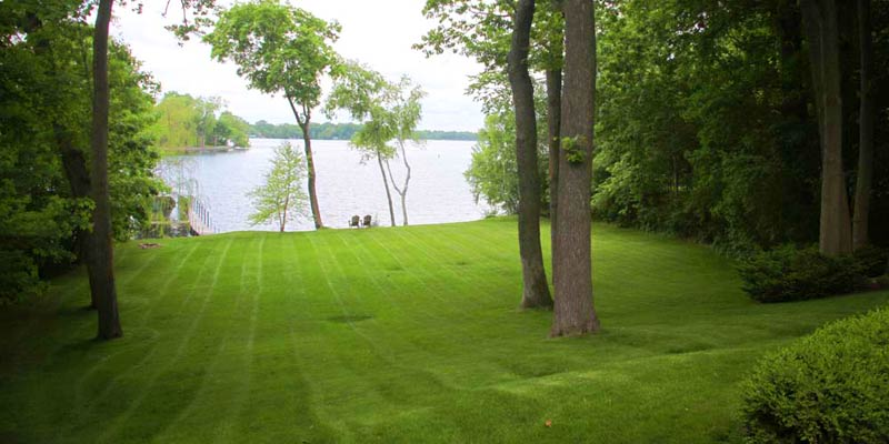 Minneapolis Lawncare